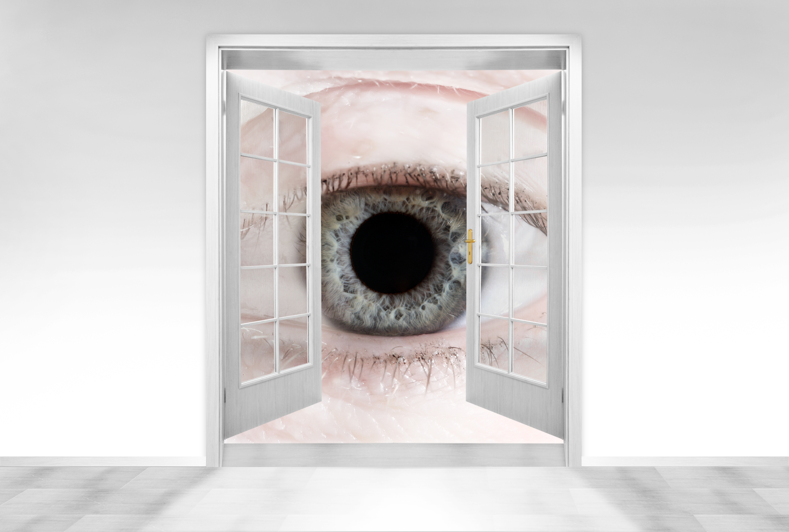 hidden-home-security-cameras-monitoring